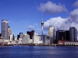 Avia - Auckland.jpg