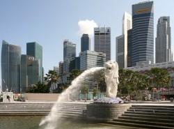 Avia - SINGAPORE8.jpg