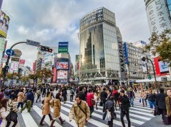 Avia - Shibuya.Crossing_.original_.10925_2.jpg
