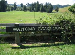 Avia - Waitomo_Caves8.JPG