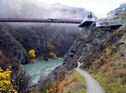 Avia - bungy-bridge.jpg
