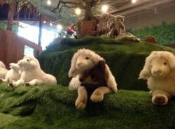 Avia - teddy_bear_museum_safari17.jpg