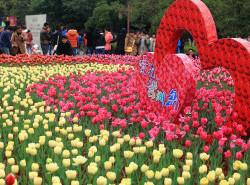 Avia - zizhou_park_guilin.jpg