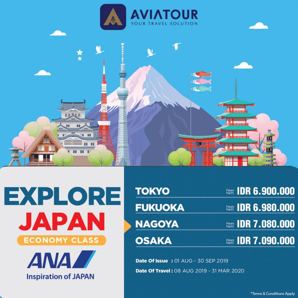all nippon airways economy