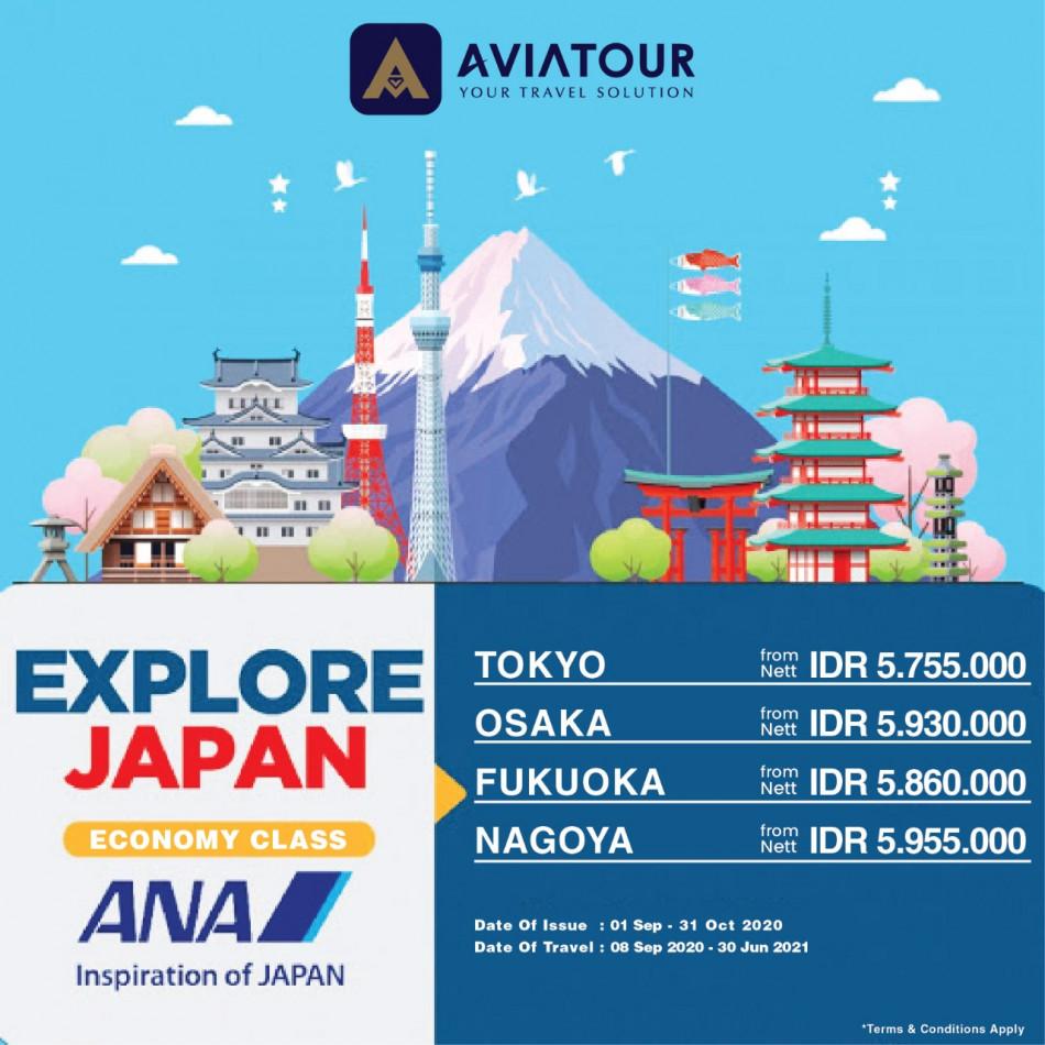 ANA JAPAN ECONOMY CLASS