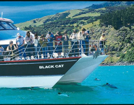Avia Tour - SOUTH NEW ZEALAND + AKAROA CRUISE