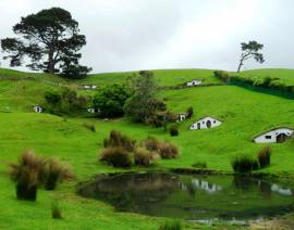 Avia Tour - NEW ZEALAND MATA - MATA (HOBBITON)
