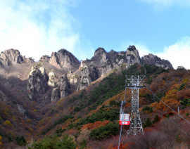 Avia Tour - G'DAY MINI KOREA + MT. DAEDUN