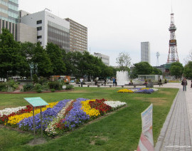 Tour - G-DAY JAPAN HOKKAIDO + TOKYO
