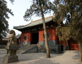 Avia Tour - G'DAY SHAOLIN TEMPLE + YUNTAISHAN