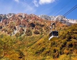 Avia Tour - G'DAY JAPAN AUTUMN ALPIN ROUTE