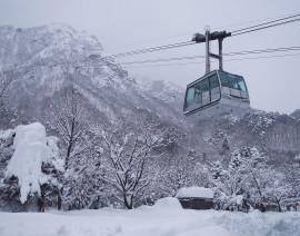 Avia Tour - WINTER KOREA JEJU SKI + MT. SORAK