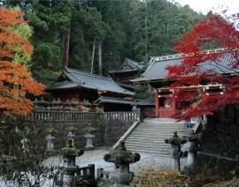 Avia Tour - G'DAY JAPAN TOHOKU
