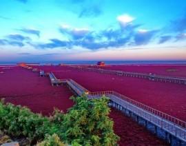 Avia Tour - PANORAMIC HARBIN plus CHANGBAISHAN & THE RED BEACH
