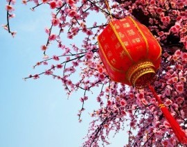 Avia Tour - THE BLOSSOMING EASTERN CHINA