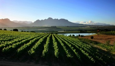 Tour - SOUTH AFRICA CAPE TOWN + WINE TASTING