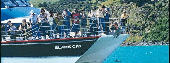 Avia Tour - SOUTH NEW ZEALAND + AKAROA CRUISE
