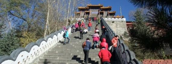 Avia Tour - GDAY FOUR SACRED BUDDHIST MOUNTAINS
