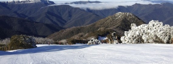 Avia Tour - WINTER AUSSIE TANGALOOMA + MT. BULLER