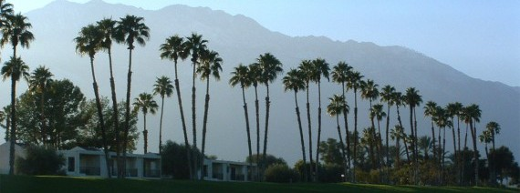 Avia Tour - WEST COAST + PALM SPRING