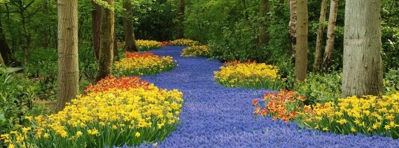 Avia Tour - G'DAY WEST EUROPE LONDON plus KEUKENHOF