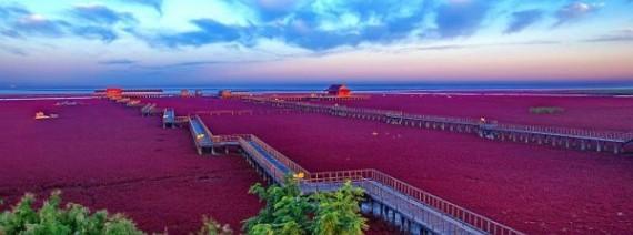 Avia Tour - GDAY BEAUTIFUL CHANGBAISHAN & RED BEACH