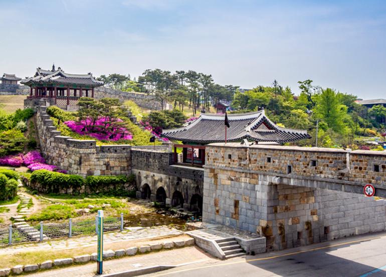 Avia Tour - BEST DEAL KOREA + SUWON
