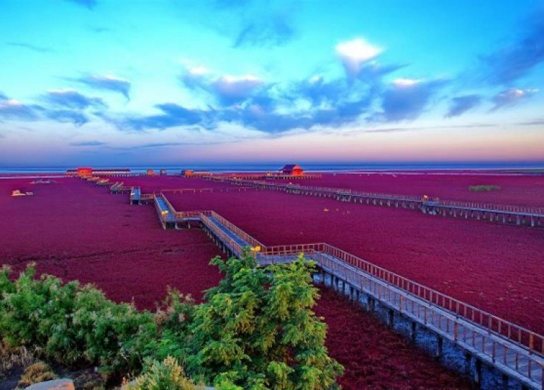 Avia Tour - GDAY BEAUTIFUL CHANGBAISHAN & RED BEACH