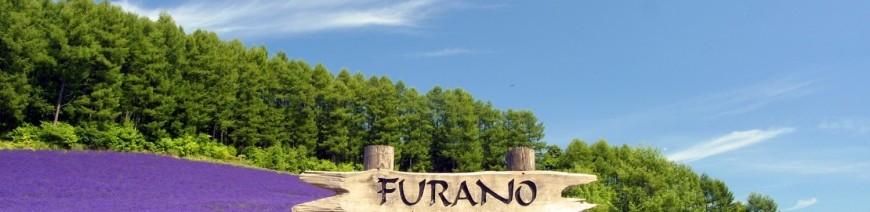 Tour - G-DAY JAPAN HOKKAIDO +  FURANO