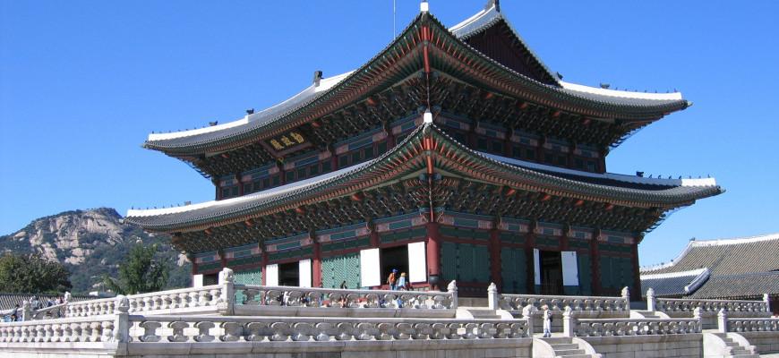 GDAY KOREA JEJU CANOLA & CHERRY BLOSSOM + BIBAP SHOW-1