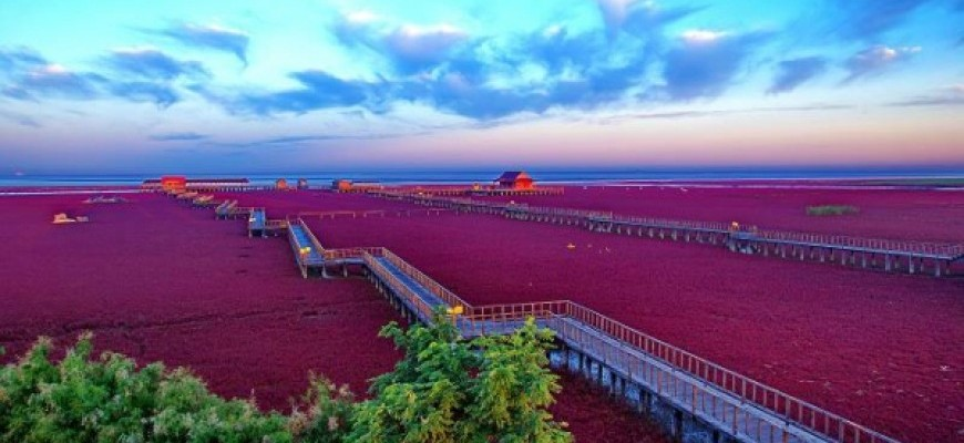 PANORAMIC HARBIN plus CHANGBAISHAN & THE RED BEACH-1